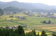 里山風景(内山先生ご提供)
